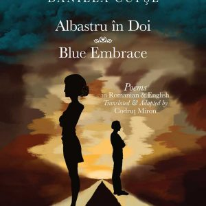 Blue Embrace poetry book , front cover